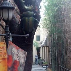 Entrance to Dragon Hill Spa