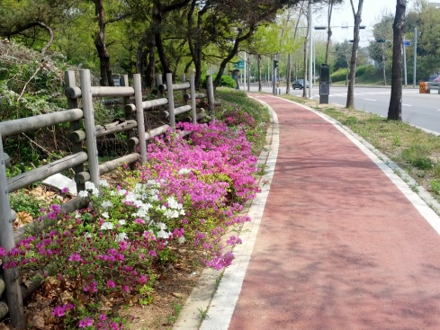 Path near Gyeonggi English Village