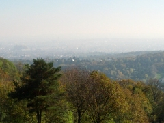 A hazy overlook of Vienna from the surrounding woods.