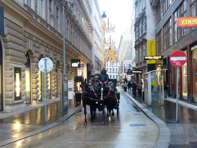 Wet winter streets in Vienna