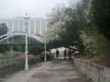 Stadtpark3