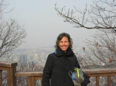 overlooking Seoul