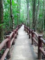 Trail Thailand