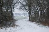Winter In Wettenbostel, Germany